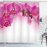 ABAKUHAUS Spa Duschvorhang, Exotische Orchidee Feng Shui, mit 12 Ringe Set Wasserdicht Stielvoll Modern Farbfest & Schimmel Resistent, 175x180 cm, Mehrfarbig