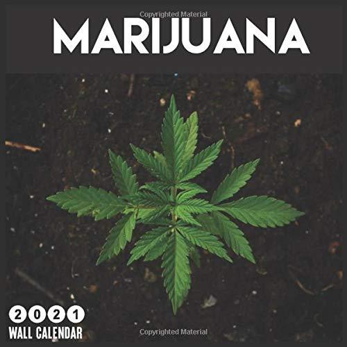 Marijuana 2021 Wall Calendar: 16 Months Calendar 2021, Funny Gag Gifts 2021