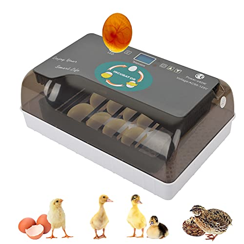 Hatching Eggs Incubators LncBoc 12 Eggs Digital Fully Automatic Temperature Control Egg Hatcher Household Poultry Hatching Machine for Bird Egg Turkey Egg Chickens Ducks Goose