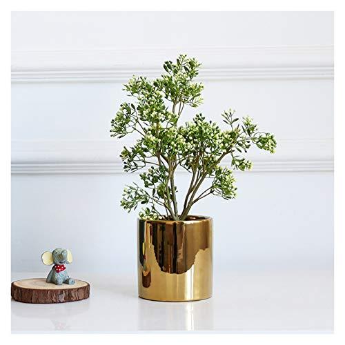 Hong Yi Fei-Shop Plantas Artificiales Artificial en Maceta Plantas Falsas Pistacho árbol en Maceta Las Plantas de Interior Plantas Sala Decoración Mini Faux con la Mina Bonsáis (Color : C)