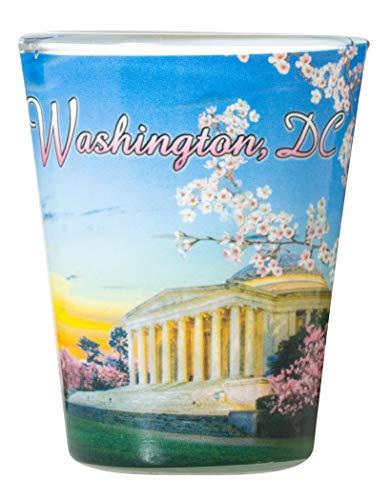 Washington DC City Souvenir Cherry Blossoms Shot Glass