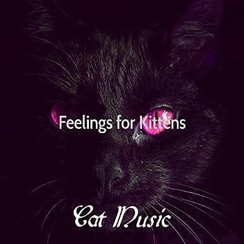 Feelings for Kittens