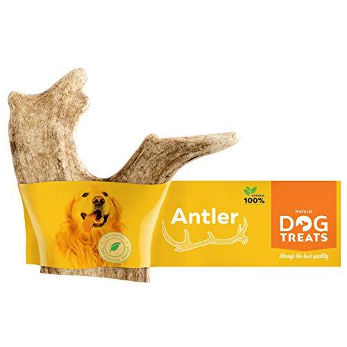 Natural Dog Treats Premium Damhirschgeweih für Hunde 100% Natürlich Kauspielzeug Kauknochen Hundeknochen Geweih, Größe Large