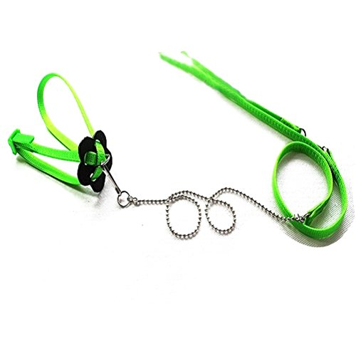 PIXNOR 1,2 M einstellbar Reptil Eidechse Harness Leine im freien Spaziergang (grün)