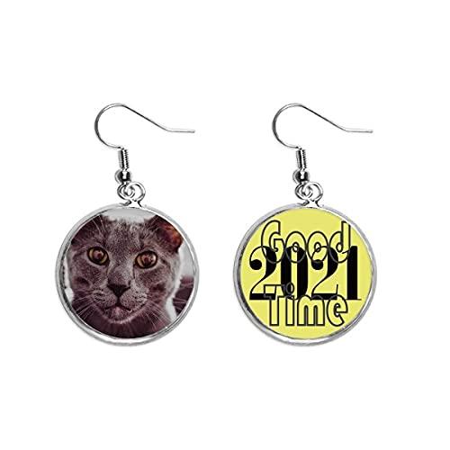 Animal ojo grande gris gato fotografía pendientes oído colgantes joyería 2021 buena suerte