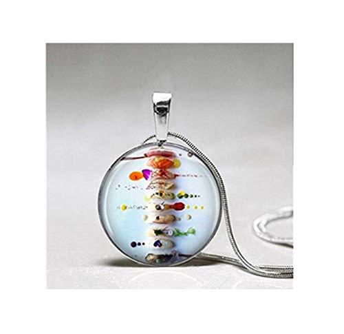 heng yuan tian cheng Sushi Necklace ,Sushi Pendant, Sushi Jewelry , Gift for Sushi Lover,Dome Glass Ornaments, Hand-Made.
