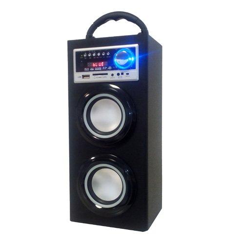 Majestic TS 78 BT USB SD AX - Altoparlanti a torre portatili con Bluetooth, Ingressi USB/SD/AUX-IN, radio FM, batteria ricaricabile, luci intermittenti, Nero