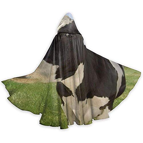 Niet geschikt kostuum omhanging, capuchon robe, carnaval cape, cape, cape met capuchon, volwassenen omhanging, melkkoe wilg duivel heks toveraar omhang,vampierkostuum, party capuchon mantel