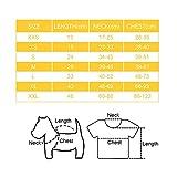 Zoom IMG-2 podazz giubbotto salvagente per cani