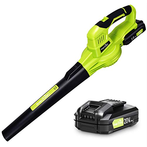 Powerful Cordless Blower