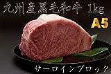 【A5雌牛】九州産黒毛和牛サーロインブロック (1kg)