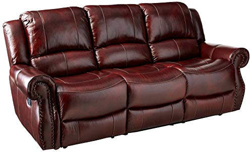 Cambridge Telluride Leather Double Reclining Sofa, Brown