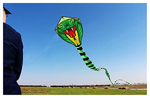 RXZUIWEI Aquilone Sport Divertenti all'aperto per Bambini Adulti Professionale 8m Wind Kite con Strumenti Buon Giocattolo Volante Aquilone (Color : 30m)