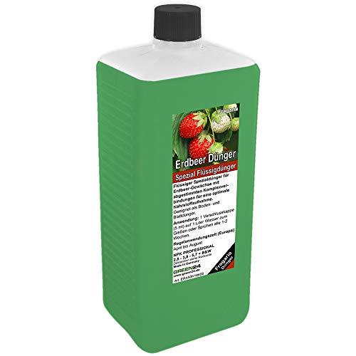 GREEN24 Erdbeer-Dünger XL 1 Liter Spezial Dünger für Erdbeer-Pflanzen, Fragaria Arten