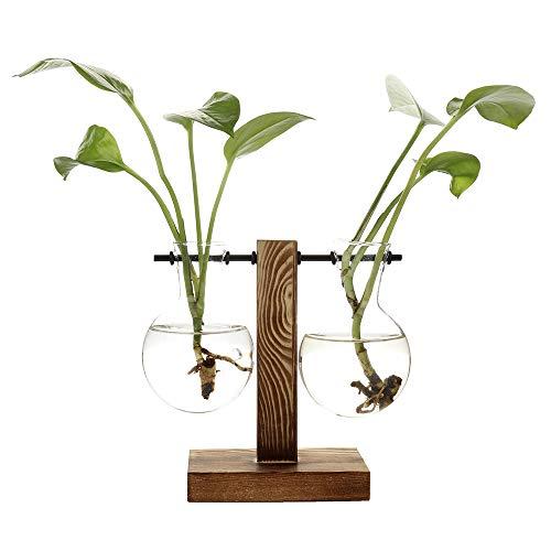 belupai Floreros hidropónicos vintage florero transparente marco de madera vidrio Tabletop Plants Home Bonsai Decor Envío de gota (C - 2 bulbos jarrón