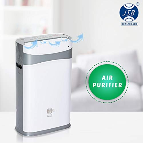 JSB HF132 Car Air Purifier with HEPA Filter, Ionizer for Dust & Odour Removal (HF132 for Car (White))