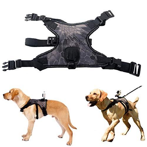 Arnés para perro para cámaras GoPro, con soporte trasero para cámara desde la perspectiva del perro para perros medianos y grandes para viajes al aire libre, L