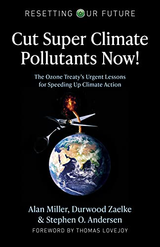 Cut Super Climate Pollutants Now!: The Ozone Treaty's Urgent Lessons for Speeding Up Climate Action (Resetting Our Future) (English Edition)