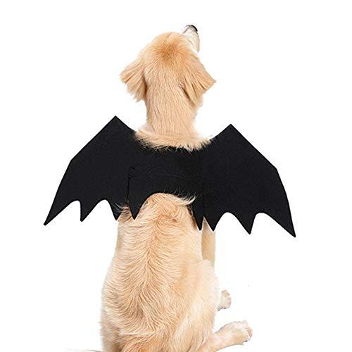 Know Halloween-Kostüme Fledermausflügel, Flügel, für kleine und große Hunde und Katzen, Fledermaus-Kostüm, Halloween-Kostüm, Large