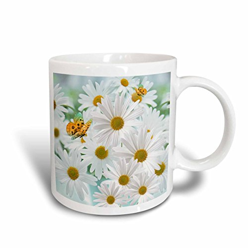 3dRose mug_79433_2'White Daisies Aprils Birth Flower with Butterflies perfect for the April Birthday' Ceramic Mug, 15 oz, Multicolor