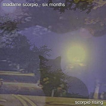 Madame Scorpio - Six Months