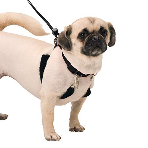 SPORN Dog Halter, Black, Medium