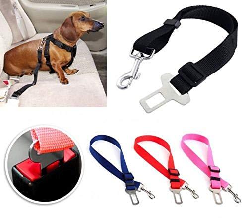 Eden veiligheidslijn voor honden en hondenriemen voor transport in de auto