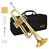 Eking Standard Student Trumpet Brass Gold Bb Trumpet Beginner with Hard Case Gloves Cloth 7C Mouthpiece and Valve Oil, KTR-400