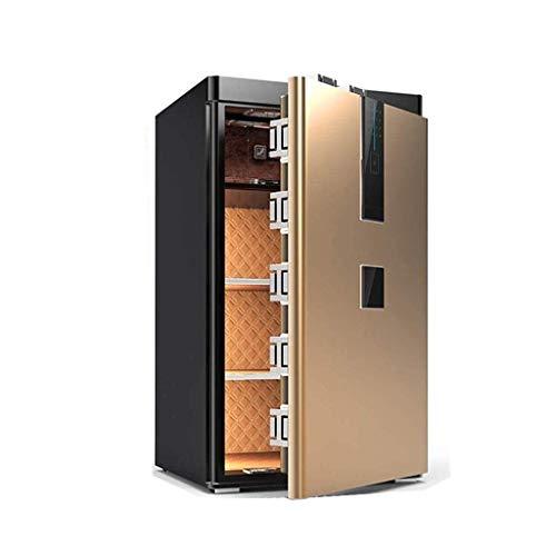 RTYUI Safes - Teclado digital grande y seguro, indicadores de luz LED, llave de anulación de emergencia, caja de seguridad con contraseña de acabado (color: dorado, tamaño: 80 x 42 x 46 cm)