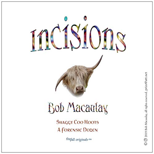 Incisions: A Forensic Dozen     Shaggy Coo Hoots, Book 1              By:                                                                                                                                 Bob Macaulay                               Narrated by:                                                                                                                                 Bob Macaulay                      Length: 33 mins     Not rated yet     Overall 0.0