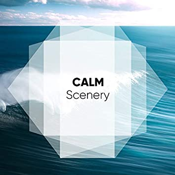 # Calm Scenery