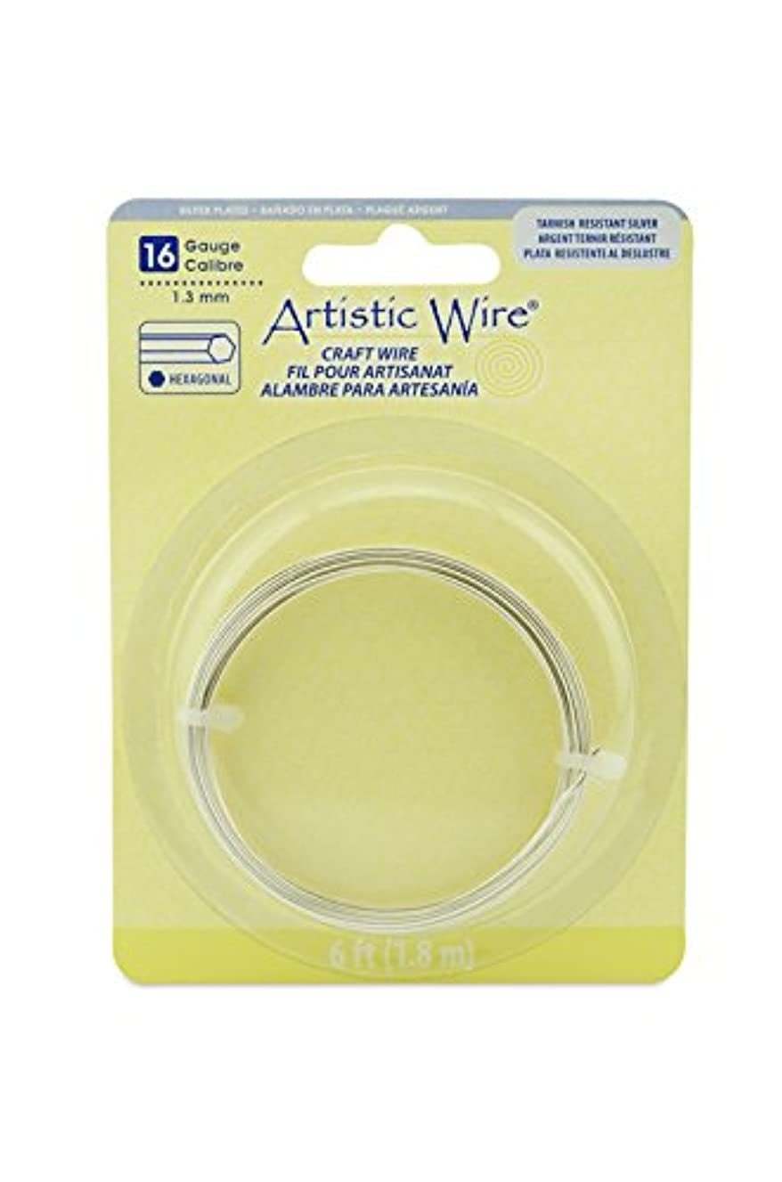 Artistic Wire 16 Gauge, Plated, Tarnish Resistant Silver, 6 ft Hexagonal Wire,