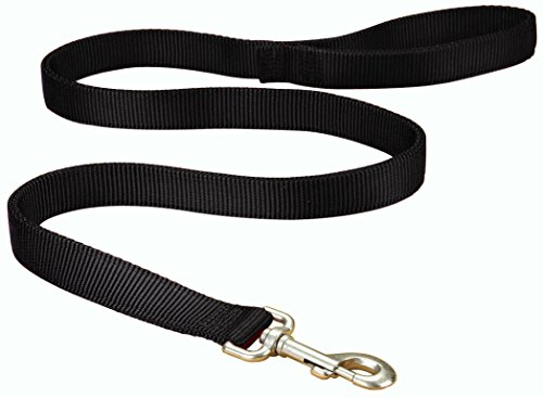 Hamilton Double Thick Nylon Dog Walking Lead Total Length Including Loop Handle, 1-Inch by 4-Feet, Black