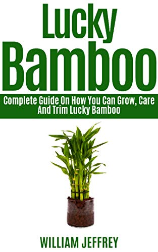 LUCKY BAMBOO: Complete Guide on How You Can Grow, Care and Trim Lucky Bamboo