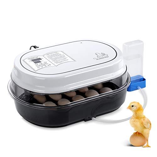 Pedy Vollautomatische Inkubator für bis zu 18 Hühnereier Brutmaschine Motorbrüter Hühner Brutapparat mit LED Temperaturanzeige und Präzieser Temperatursensor, Temperatur und Feuchtigkeitsregulierung,
