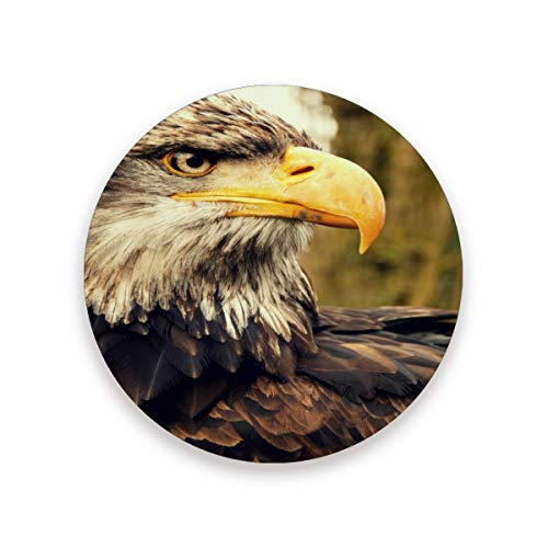Luckyeah R&e Untersetzer mit Vogelmotiv, Adlerbaum-Motiv, hitzewiderstandsfähig, Keramikkorkmatte für Getränke, Zuhause, Küche, Bar, 2 Stück