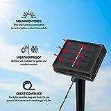Zoom IMG-1 gardenkraft 15580 benross ghirlanda luminosa