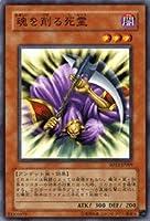遊戯王カード 【 魂を削る死霊 】 SD13-JP009-N 《ストラクチャーデッキ-巨竜の復活》