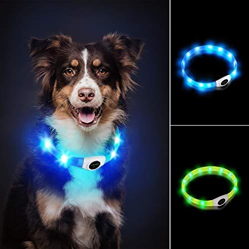 LaRoo LED Hundehalsband USB Wiederaufladbarer Night Safety Hundehalsband Leuchtend Halsband für Klein Mittleren Großen und Langhaarigen Hund