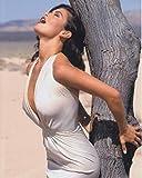 sp:大きな写真、キャサリン・ゼタ=ジョーンズ、白ドレス