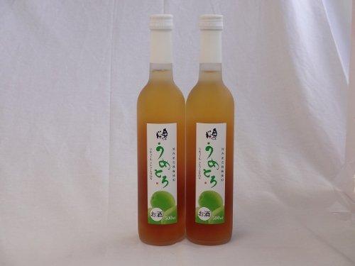 完熟梅の味わいと日本酒のうまみをたっぷりの梅リキュール 500ml×2本