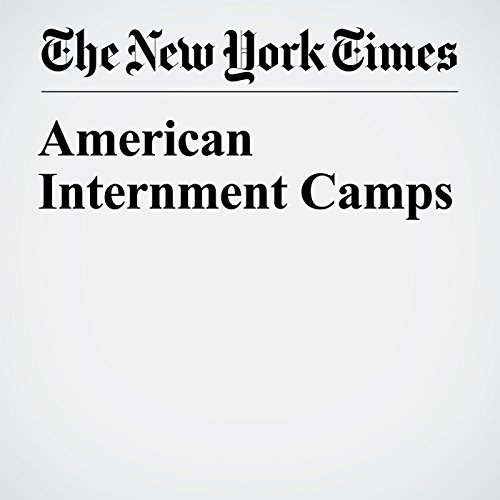 American Internment Camps audiobook cover art