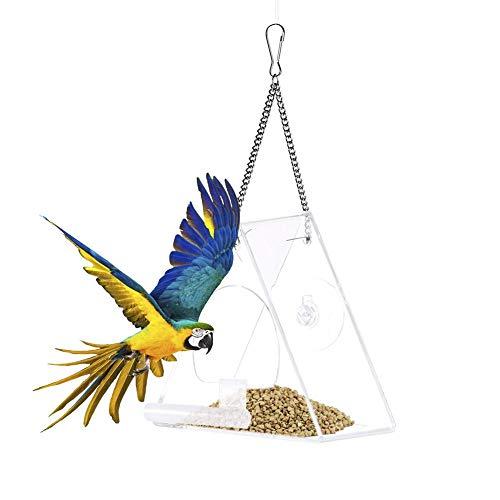 Mangeoire à oiseaux avec fenêtre, distributeur de nourriture suspendu à support de avec ventouse, accessoires conteneur de nourriture pour animaux de compagnie pour perruche canari de perruche