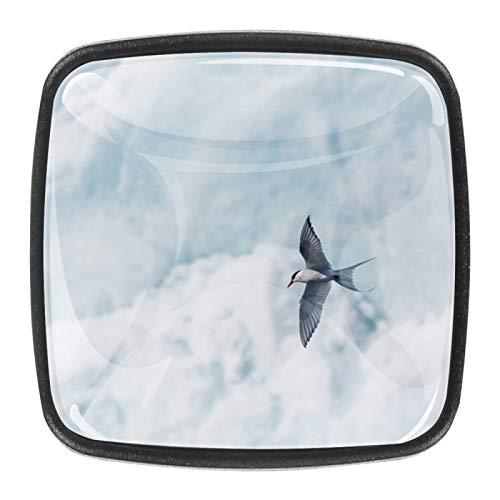 4 pomos de cristal para puerta de armario y cajón, diseño de pájaro volador