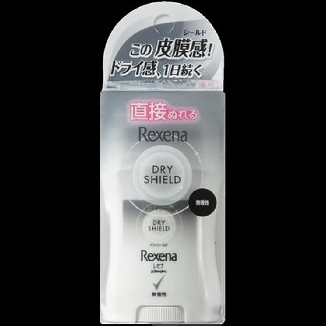 主流透けて見える油【まとめ買い】レセナ ドライシールド パウダースティック 無香性 20g ×2セット