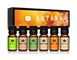 6 - 10ml glass amber bottles with easy dispensing euro dropper (dropper inset in bottle) caps. 10ml = .33oz. Please see Product description for a listing of all oils included in this set. Uses include: all soap bases; candle waxes (works exceptionall...