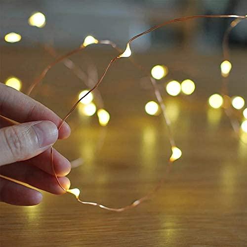 LAC 1 Luce LED 2m 20 LED Batteria, Catena Luminosa Filo Rame Ghirlanda Luminosa Lucine LED Decorative Waterproof per Camere da Letto Giardino Casa Feste Natale Matrimonio