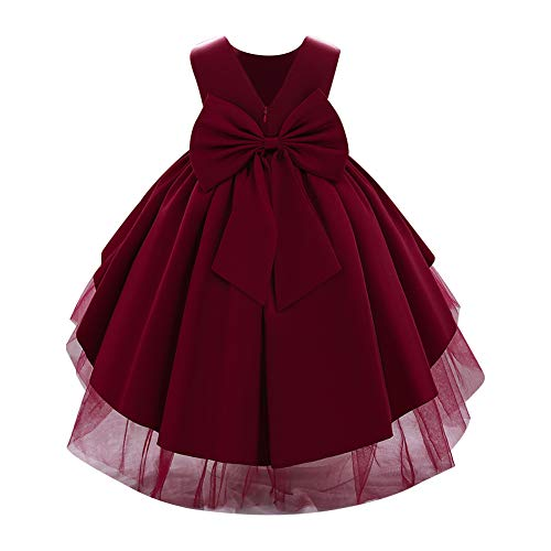 Flower Girls High Low Bowknot Tutu Dress for Kids Baby Christening Baptism Communion Birthday Party Beaded Gown Toddler Princess Pageant Wedding Bridesmaid V-Back Tulle Dresses Wine Red 18-24 Months