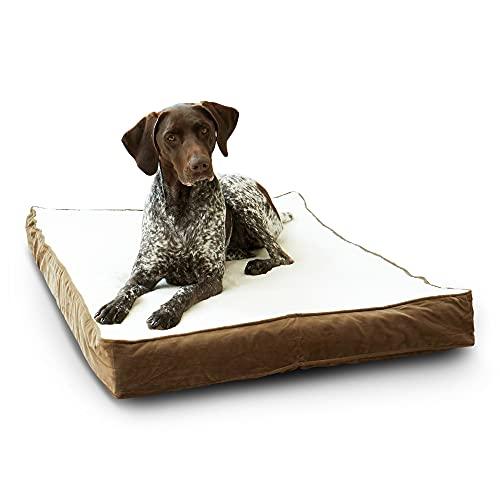 Happy Hounds Oscar Orthopedic Medium (42 x 30 in.) Mocha Rectangle Pillow Style Dog Bed