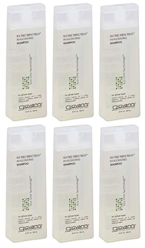 Giovanni Invigorating Shampoo, Tea Tree Triple Treat, 8.5-Ounce Bottles (Pack of 6)